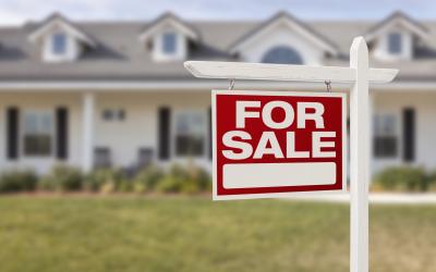 Buyer Agency Options